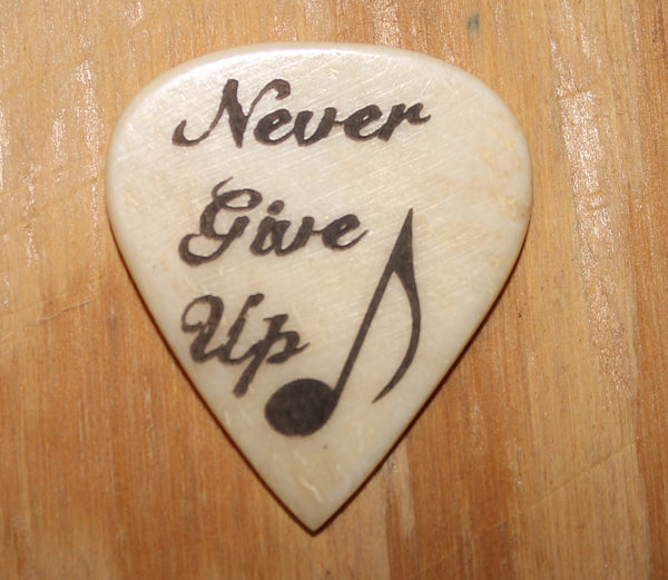 Never Give Up Guitar Pick