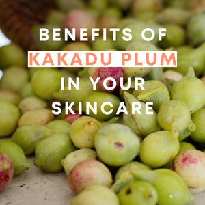Why we love the humble Kakadu Plum