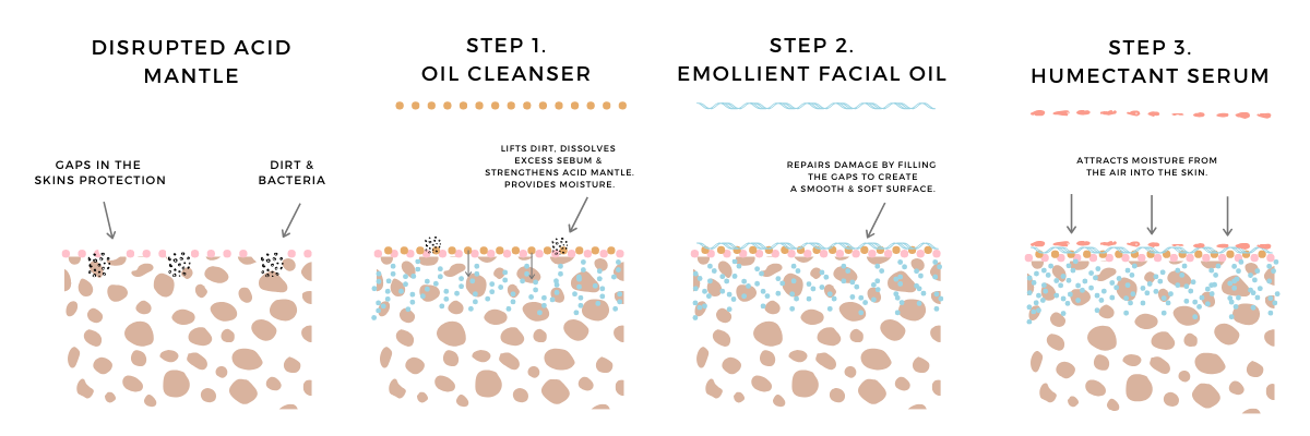 GoodieCo 3 step process to hydrate your skin