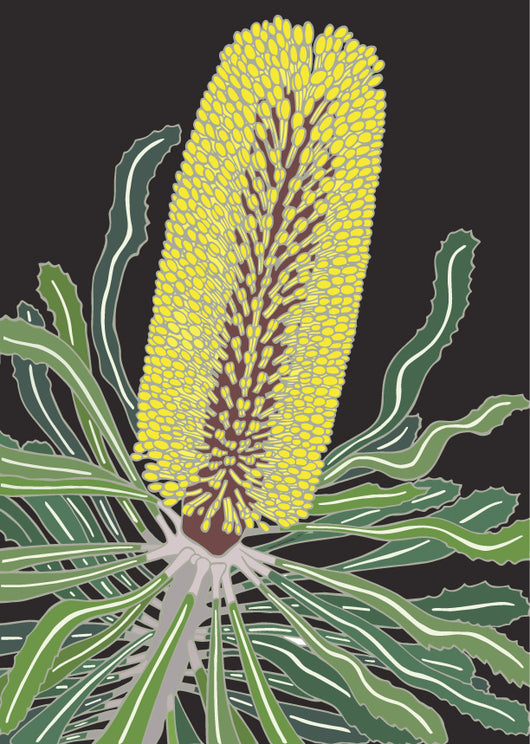 Charcoal Candlestick Banksia Art Print
