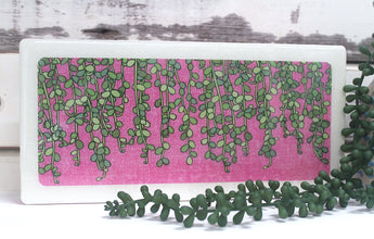 Plants on Pink - String of Pearls
