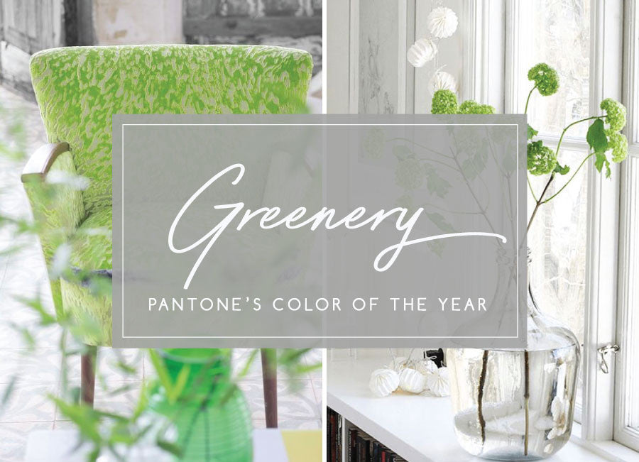 The breath of fresh juicy - Pantone color of 2017