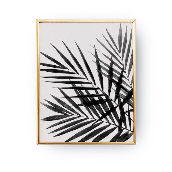 Palm Leaves Black, Poster