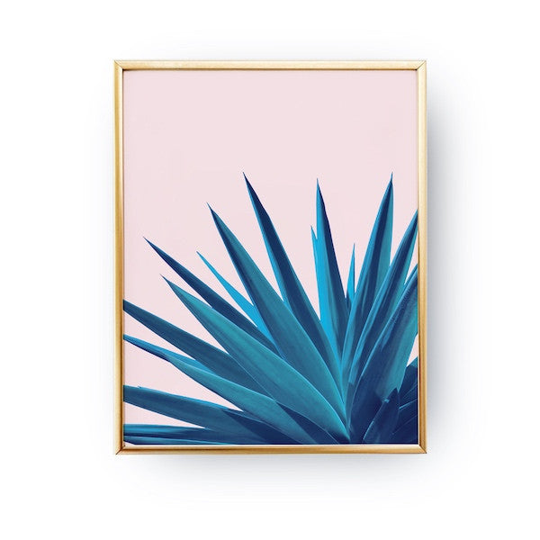 Agave Pink, Poster