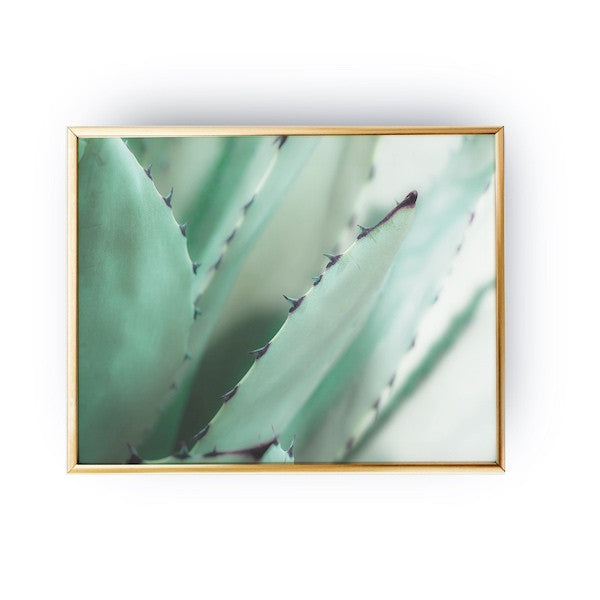 Aloes Mint, Poster
