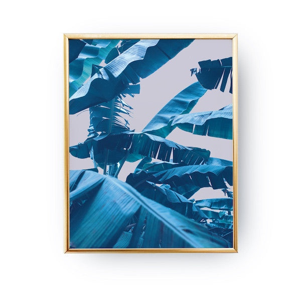 Banana Leaf Blue, Poster