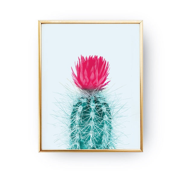 Cactus Pink Mint, Poster