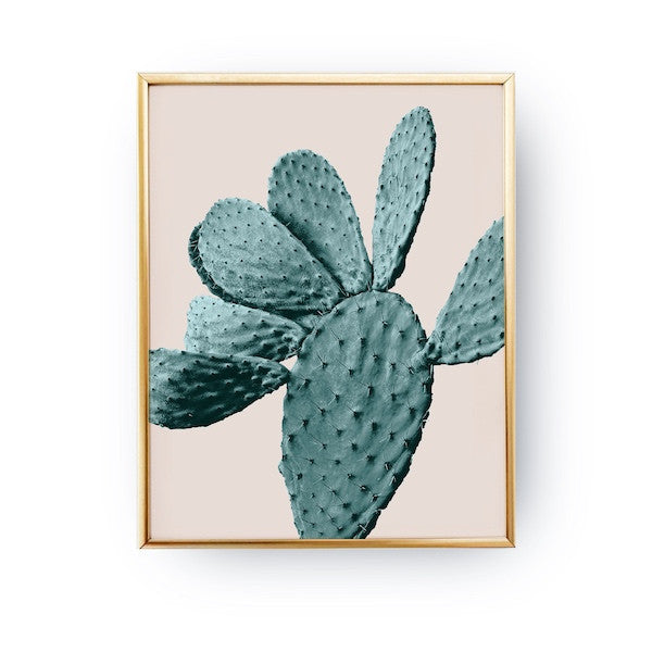Cactus Mint Pink, Poster