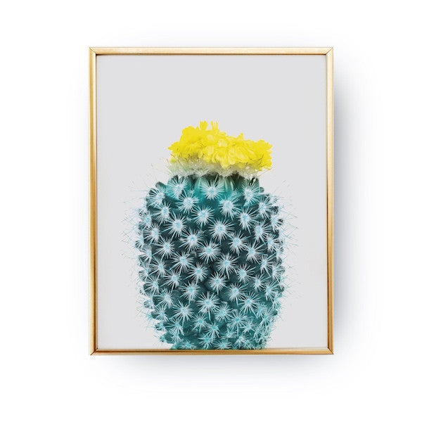 Cactus Yellow, Poster