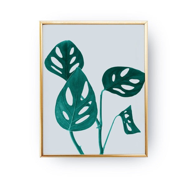 Monstera Green, Poster