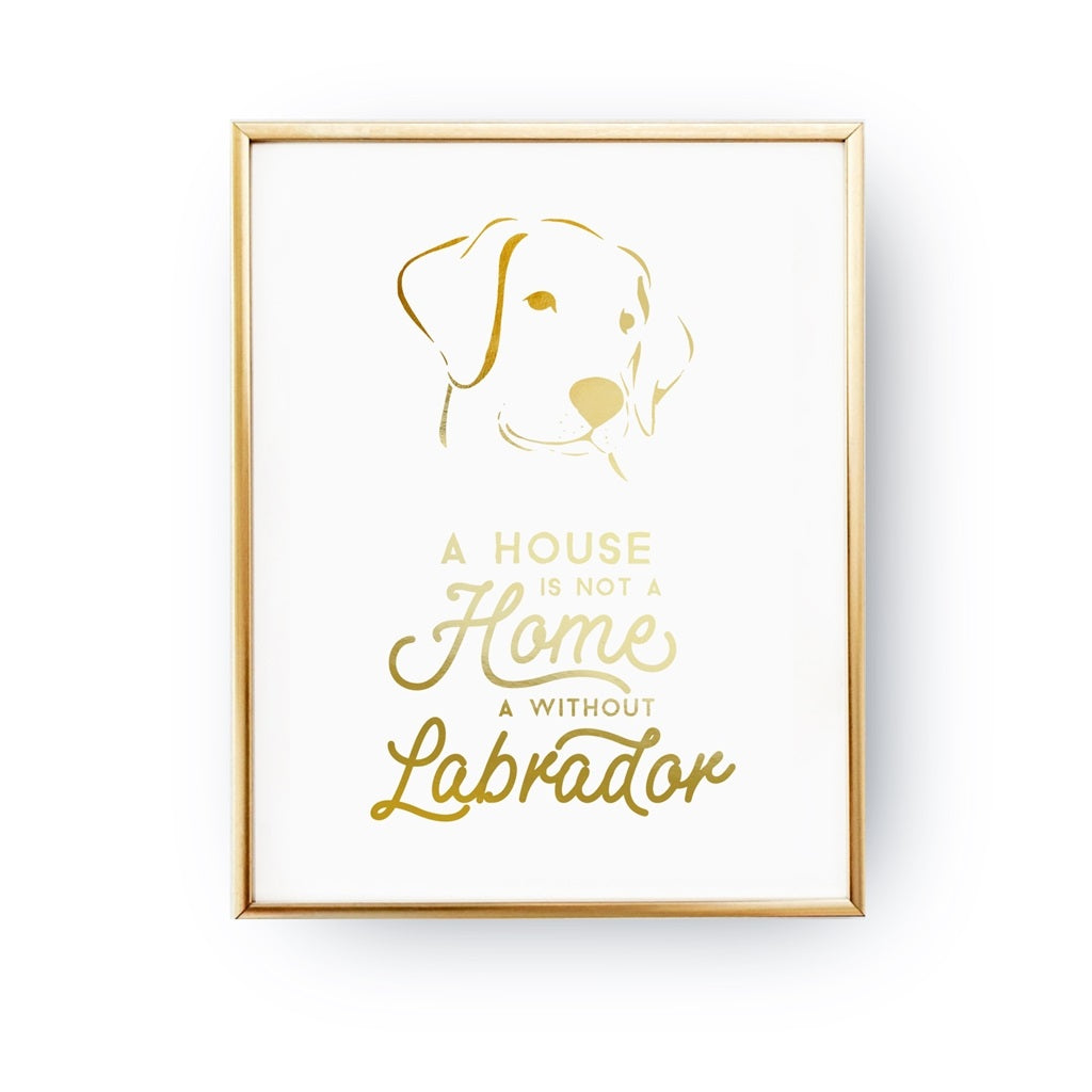 A House Is Not A Home Without A Labrador, Poster