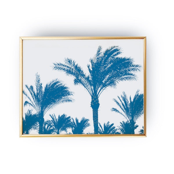 Palm Tree, Poster
