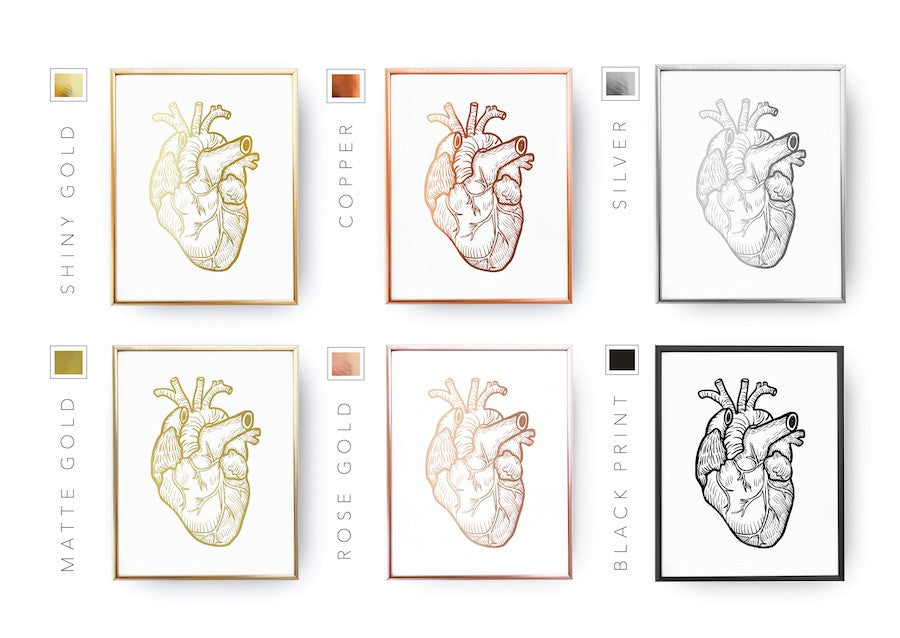Heart anatomy, Poster