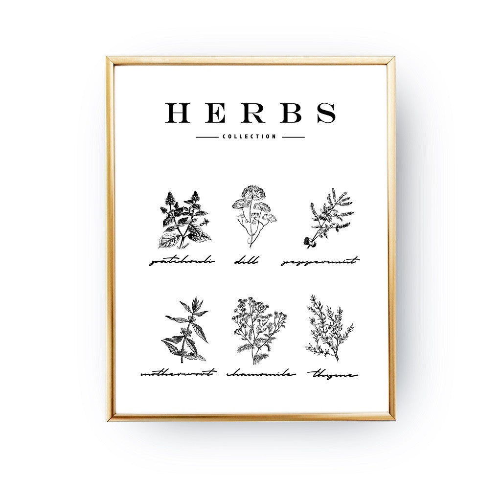 Herbs, Poster