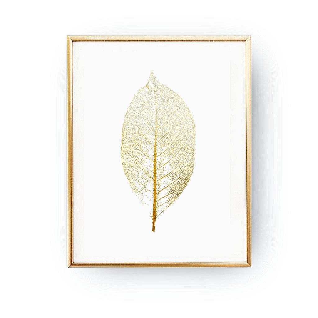 Leaf botnical, Poster