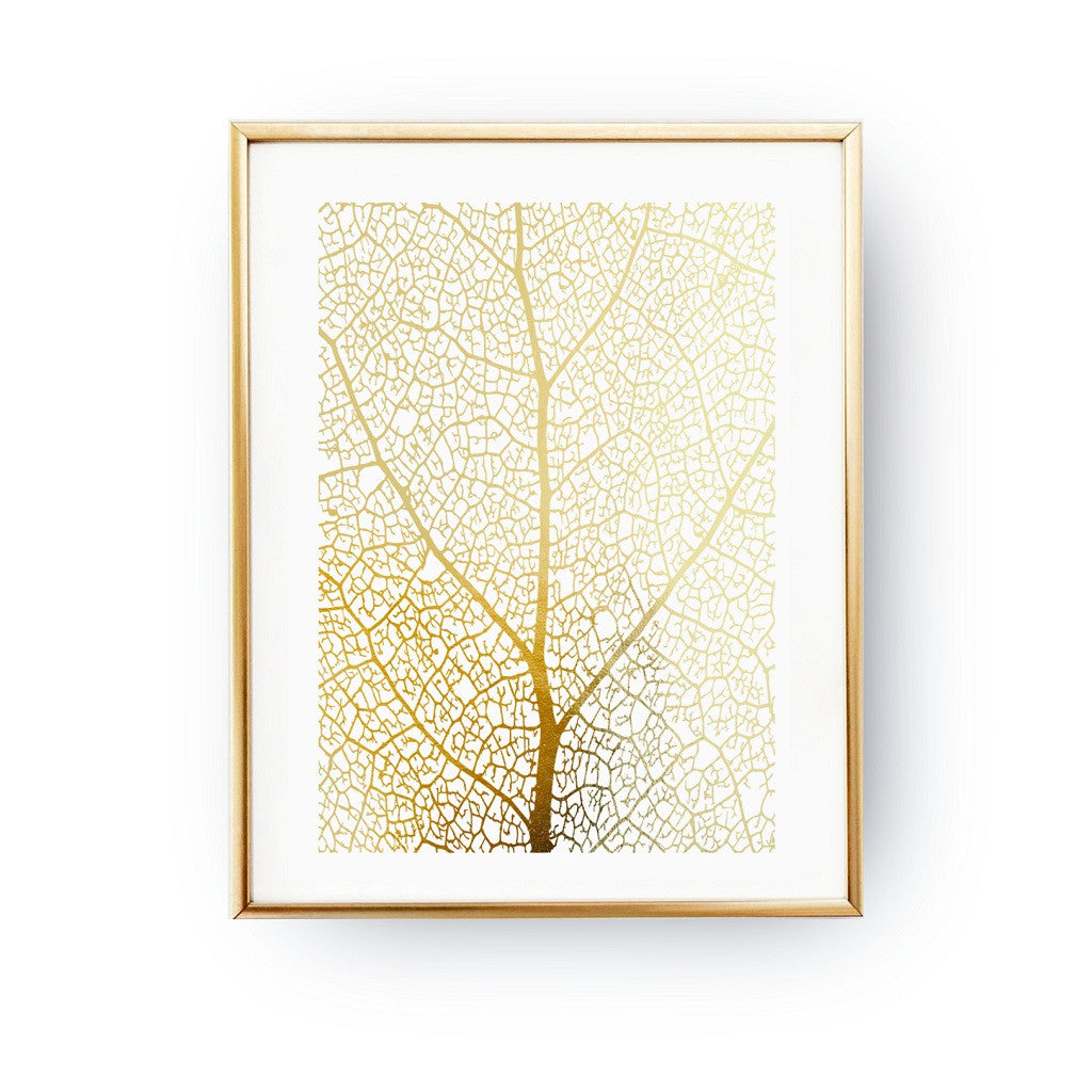Leaf structure, Poster