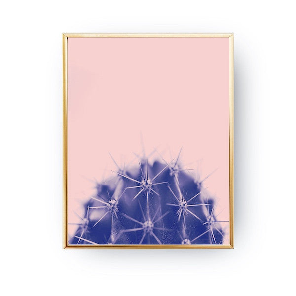 Single Cactus Pink, Poster