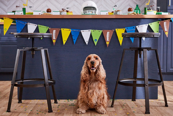 Tips for Celebrating the Super Bowl with your Dog