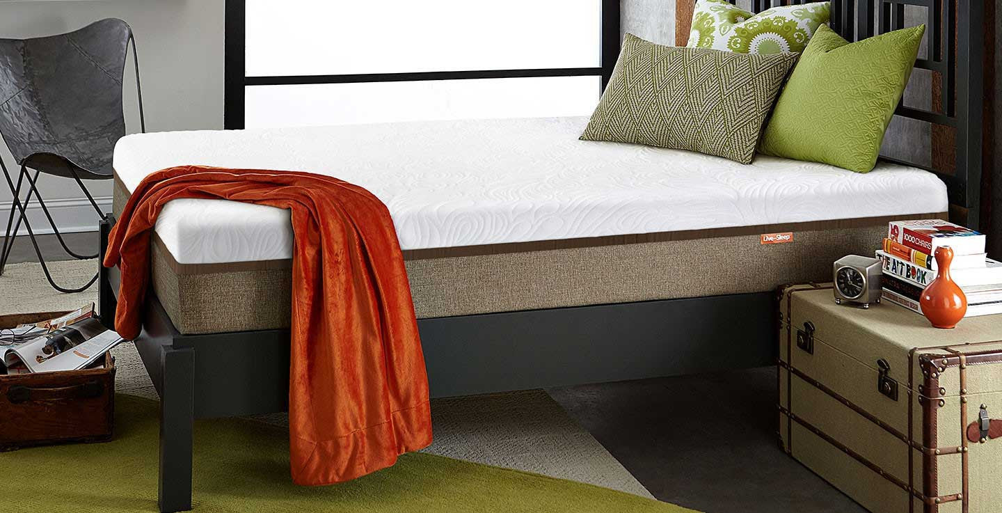 Live and Sleep Luxury Twin Mattress (includes 1 free pillow)