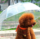 Transparent Pet Umbrella *2017*