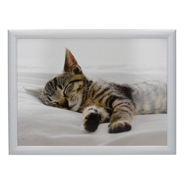 5233655 Creative Tops Sleeping Kitten Laptray - Front