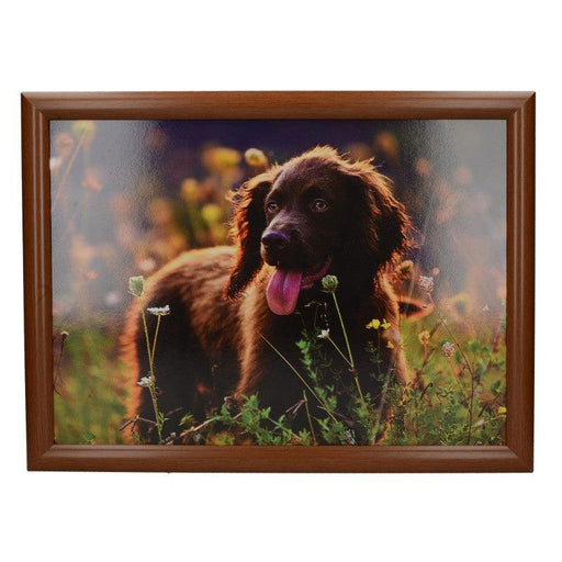 5233653 Creative Tops Spring Field Spaniel Laptray - Front