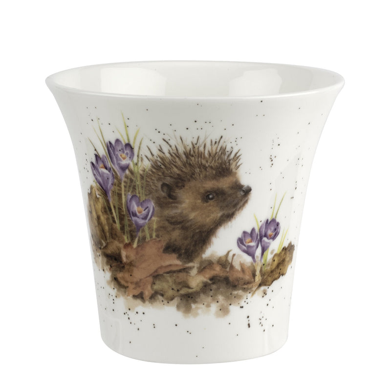 Royal Worcester Wrendale Flower & Herb Pot - Hedgehog