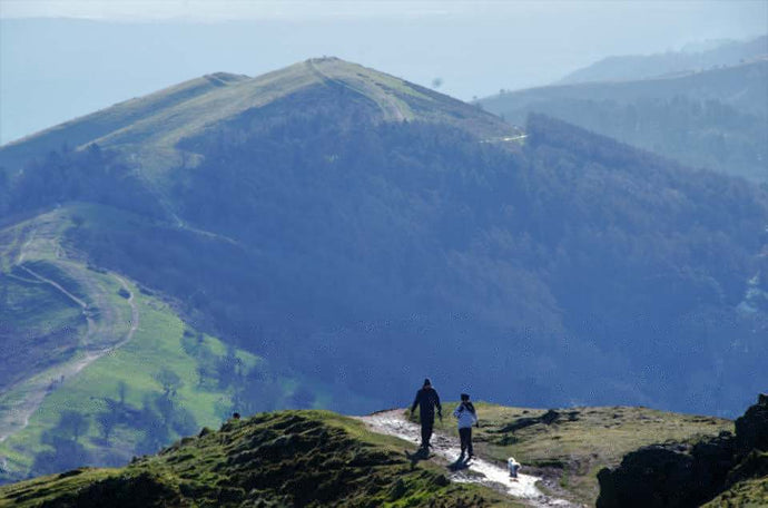 Malvern Hills - Walk4Good