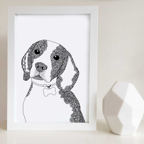 Beagle Dog art illustration print in Melbourne