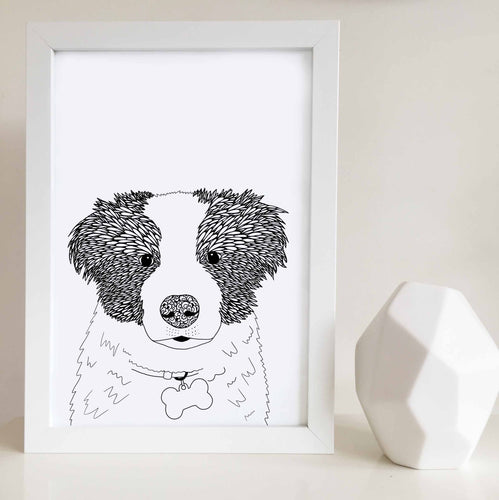 Border collie artwork illustrated by Hayley Lauren Design