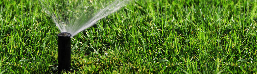 What You Should Know about Smart Watering Systems by Aeon Matrix