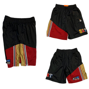 1 of 1 Lebron shooter short