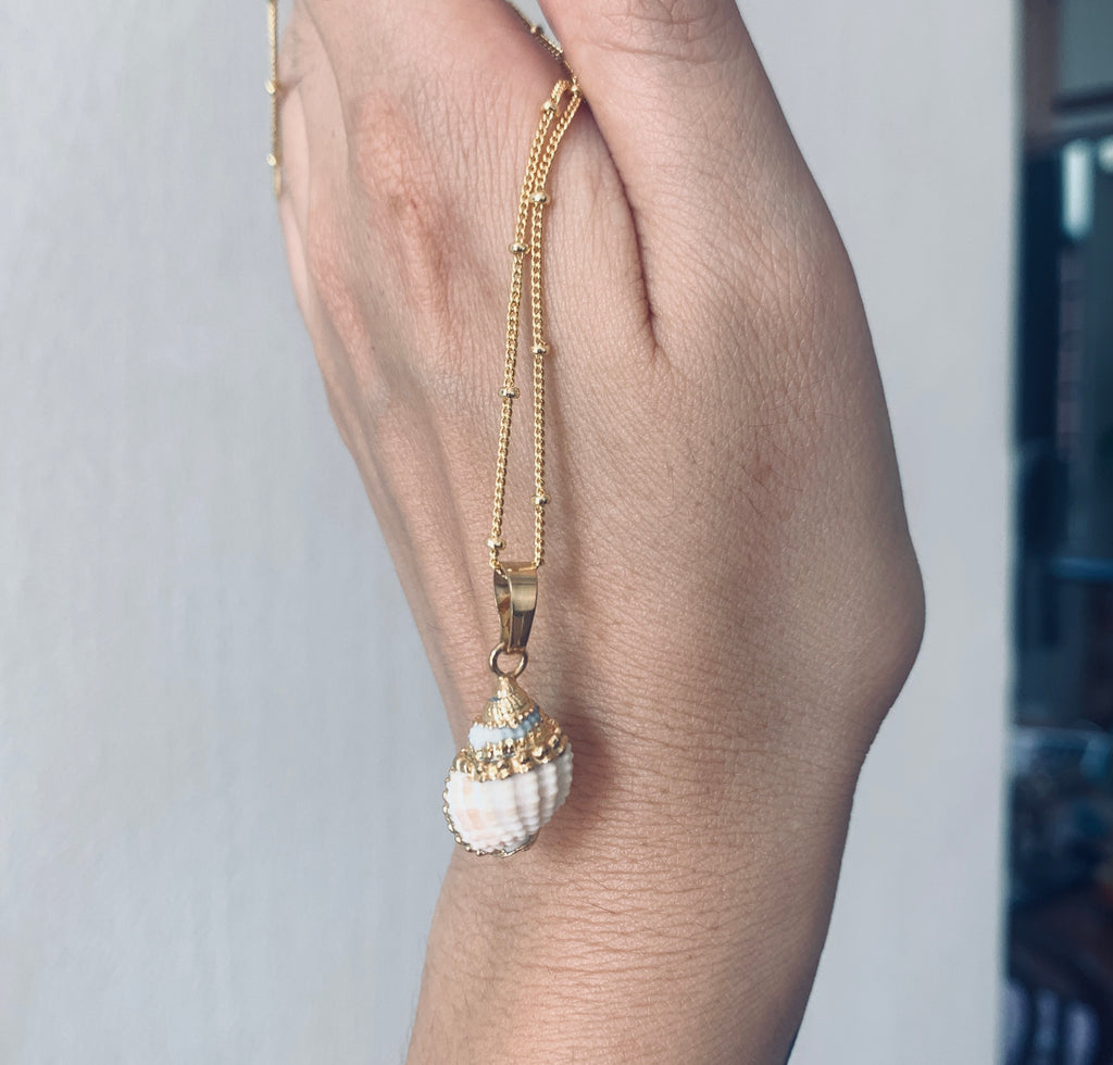 Charlotte mini shell gold plated necklace