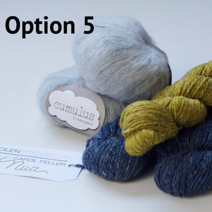 ice cloud yarn kit option 5