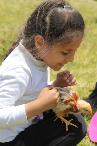 Chiri's littlest Ñaña with her Give a Cluck chicken