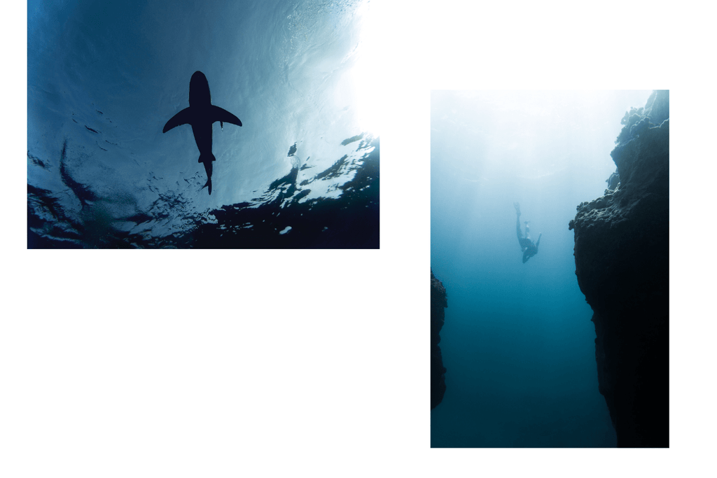 Freediving in the ocean wearing fins, mask and snorkel. Practicing to hold their breath while surrounded by beautiful coral reefs and ocean.