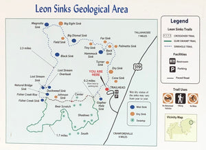 Leon Sinks Geological Area Day Hike