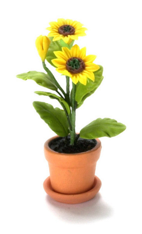Sunflower in Pot-Dollshouse Hampshire