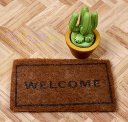 Vintage Door Mat & Cactus-Dollshouse Hampshire