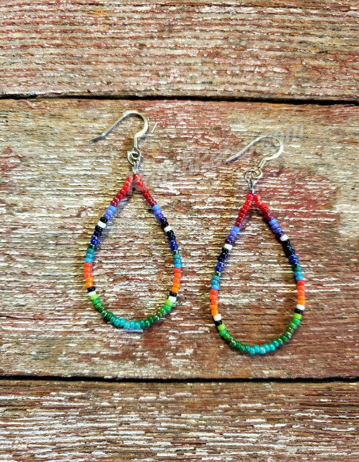Serape Beaded Drop Earrings #3627