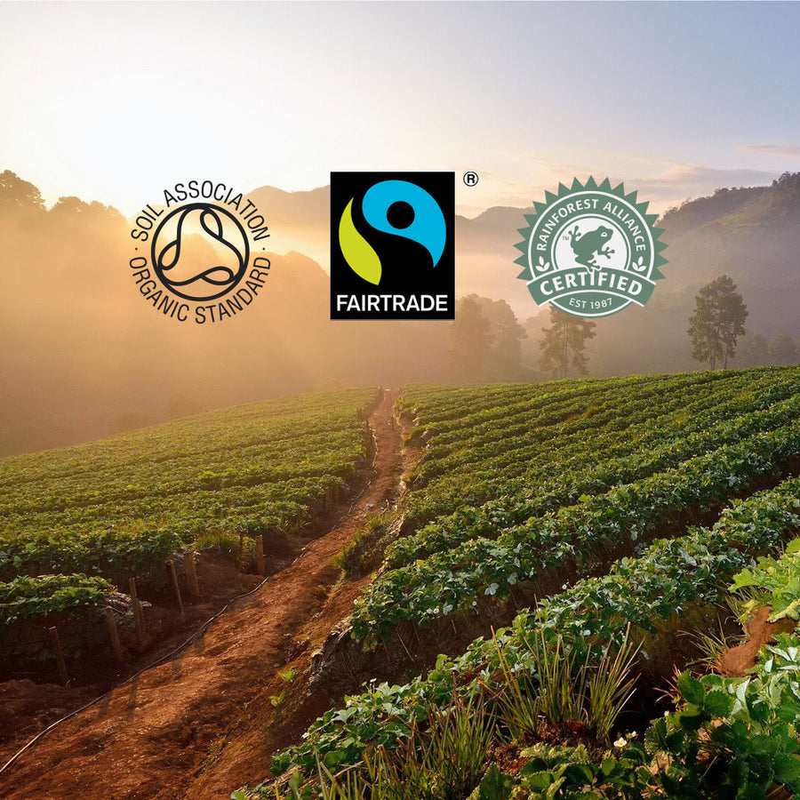 Supporting coffee growers from around the world