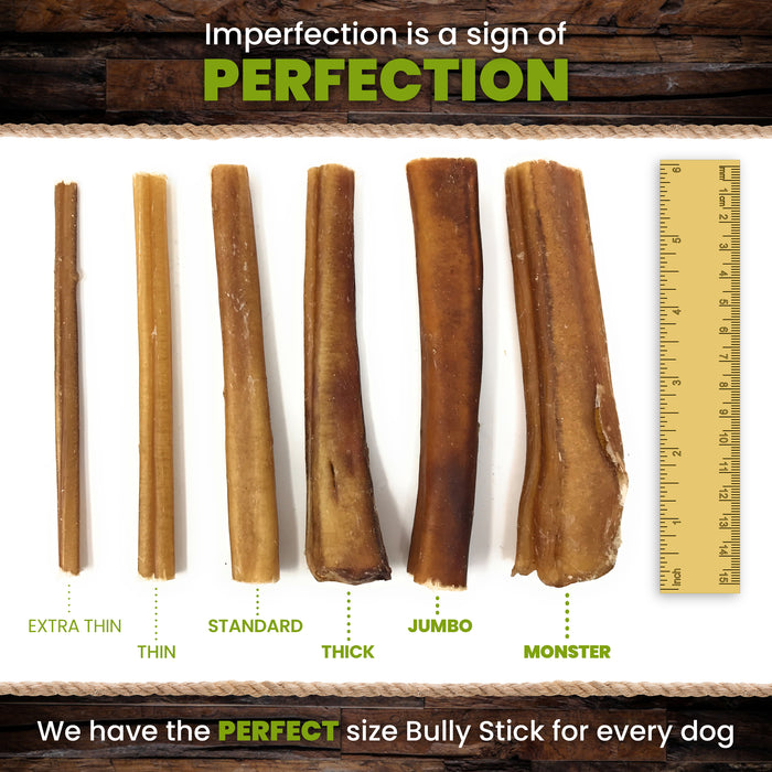 12-Inch Traditional Thin Bully Sticks - moderate odor-Buy Bulk & Save!