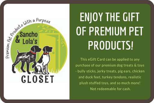 NEW! Sancho & Lola's Closet eGift Card