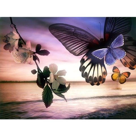 Full 5D Daimond Painting Butterflies Flower