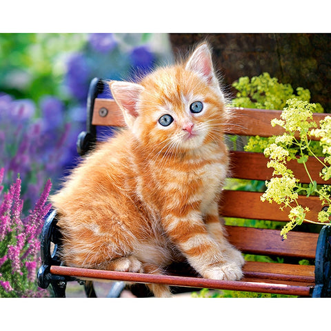 5D Kitten Diamond Painting Full square/round