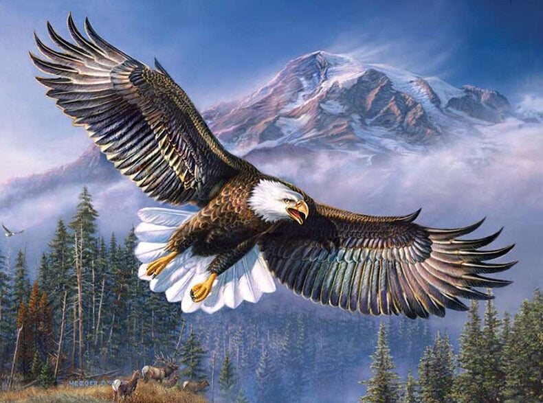 5D Diamond Painting Eagle in the Sky