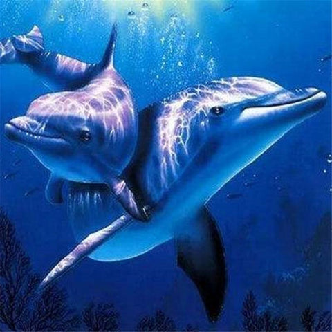 Oil Painting By Numbers Coloring Dolphin