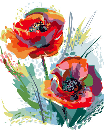 Framless Painting by Numbers Corn Poppy Flower