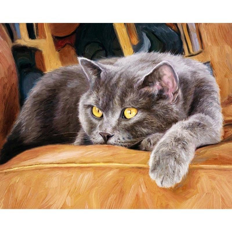 Frame Animals Cat Painting By Numbers