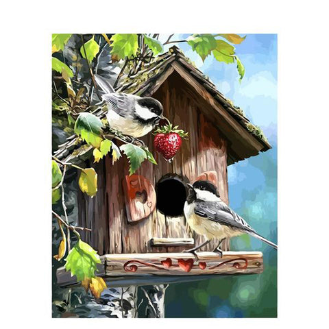 Frame Picture Birds Animals Painting By Numbers